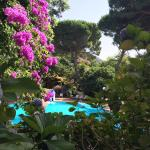 Hotel Pictures: Mesón de Sancho, Tarifa