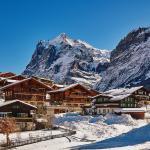 Apartment Chalet Fagus, Grindelwald