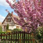 Hotel Pictures: Chambres d'Hôtes Au Temps Des Cerises, Jumièges
