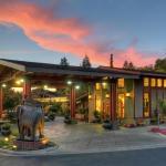 (4.5/5)   Dinahs Garden Hotel  reviews