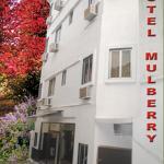 Hotel Mulberry,  Kolkata