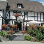 Hotel Pictures: Gasthof Pension Plitt Schepers, Olsberg