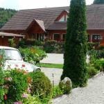 Hotel Pictures: Hotel Restaurant La Petite Auberge, Le Hohwald