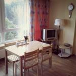 New and cozy apartment in Druskininkai,  Druskininkai