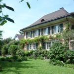 Hotel Pictures: Villa Magnolia, Richterswil