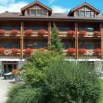 Hotel Pictures: Hotel Aeschipark, Aeschi