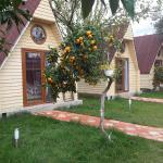 Kaz Daglari Idavilla Bungalow Hotel, Akcay
