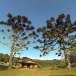 Bolicho Guabiroba, Cambará