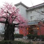 Hotel Pictures: Three Kingdoms Dingsheng Cultural Boutique Hotel, Shunyi