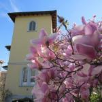 Villa Virginia, Garbagnate Milanese
