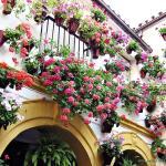 Casa en Marbella, Marbella
