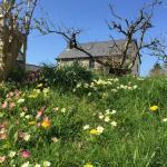 Gorslwyd Farm,  Aberporth