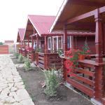 Cabane de lemn, Costinesti