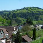 Schwarzwald Domizil Uhlsberg,  Lahr