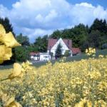 Hotel Pictures: Holiday home Sonnenberg, Willingen