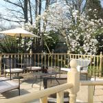 Hotel Pictures: Meadfoot Guesthouse, Windermere