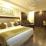 Hotel Le Roi, New Delhi