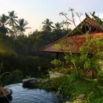 BeingSattvaa Vegetarian Retreat Villa, Ubud