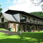 Hotel Pictures: Apartment Altes Zollhaus 2, Übereisenbach