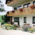 Hotel Pictures: Apartment Auf Dem Bauernhof 1, Breitnau