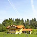 Hotel Pictures: Apartment Ferienwohnung Im Allgäu 2, Hellengerst