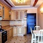 Apartment in the city center,  Truskavets