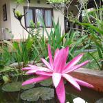 Gangga House, Ubud