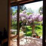 Apartment San Damiano 45, Florence