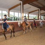 Hotel Pictures: Pony-und Ferienhof Gut Habbecke, Eslohe