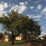 Agriturismo Belvedere Di Pierini E Brugi,  Campagnatico
