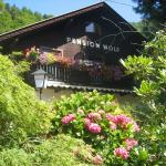 Hotel Pictures: Pension Wolf, Steindorf am Ossiacher See