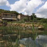 Azienda Biologica Le Castellacce, Monterotondo