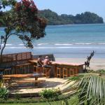 Beachfront Resort, Whitianga
