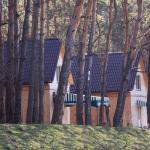 Recreation Complex Lisova,  Peschanka