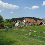 """Hotel Pictures: Gasthaus und Ferienwohnungen """"Zum Engel"""", Waldbrunn"""