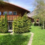 Hotel Pictures: Chalets Adler, Kandersteg