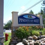 Pinestead Reef Resort, Traverse City