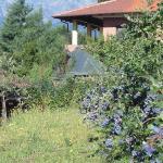B&B Agriturismo Il Ginepro, Giaveno