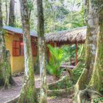 Casa del Bosque, Cahuita