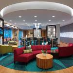SpringHill Suites by Marriott Mobile West, Mobile