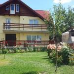 Casa Ileana, Tărlungeni