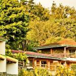 Hotel Montaña Monteverde,  Monteverde