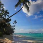 La Belle Tortue, Silhouette Island