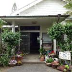 Gardenso, Hachijo