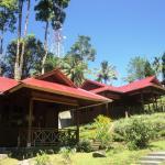 Highland Resort & Nature Tours,  Tomohon