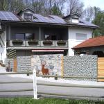 Hotel Pictures: Ferienhaus Absmeier, Bad Griesbach
