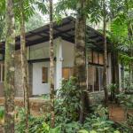 Palmstone Retreat, Kitulgala