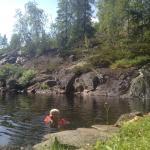 Skogheim Hytter og Camping, Hjartdal