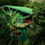 Mariposa Bed and Breakfast, Monteverde