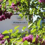 Hotel Pictures: Pension Ujut, Bad Langensalza